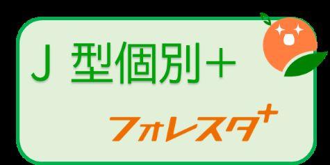 富山 自立型 個別指導